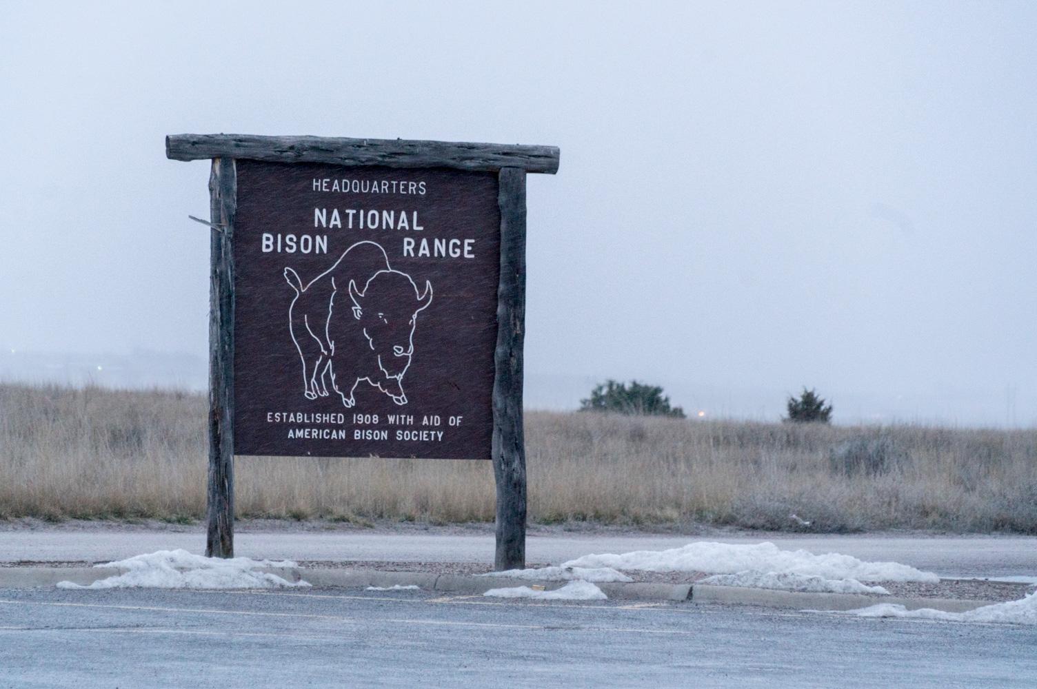 BUSTED NATIONAL BISON RANGE TRIP ENDS BETTER